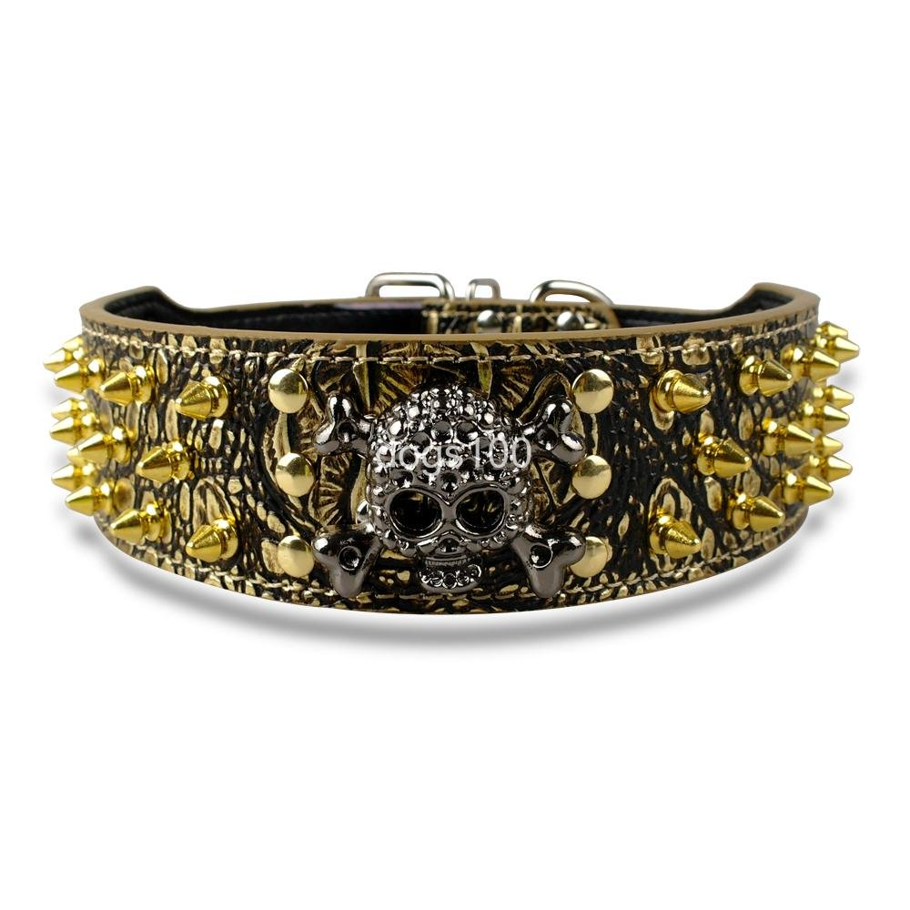 gold M gold M Ascentan(TM)2  Width gold Spikes Studded Leather Dog Collars For Medium Large 15-24  With Skull Cahrm