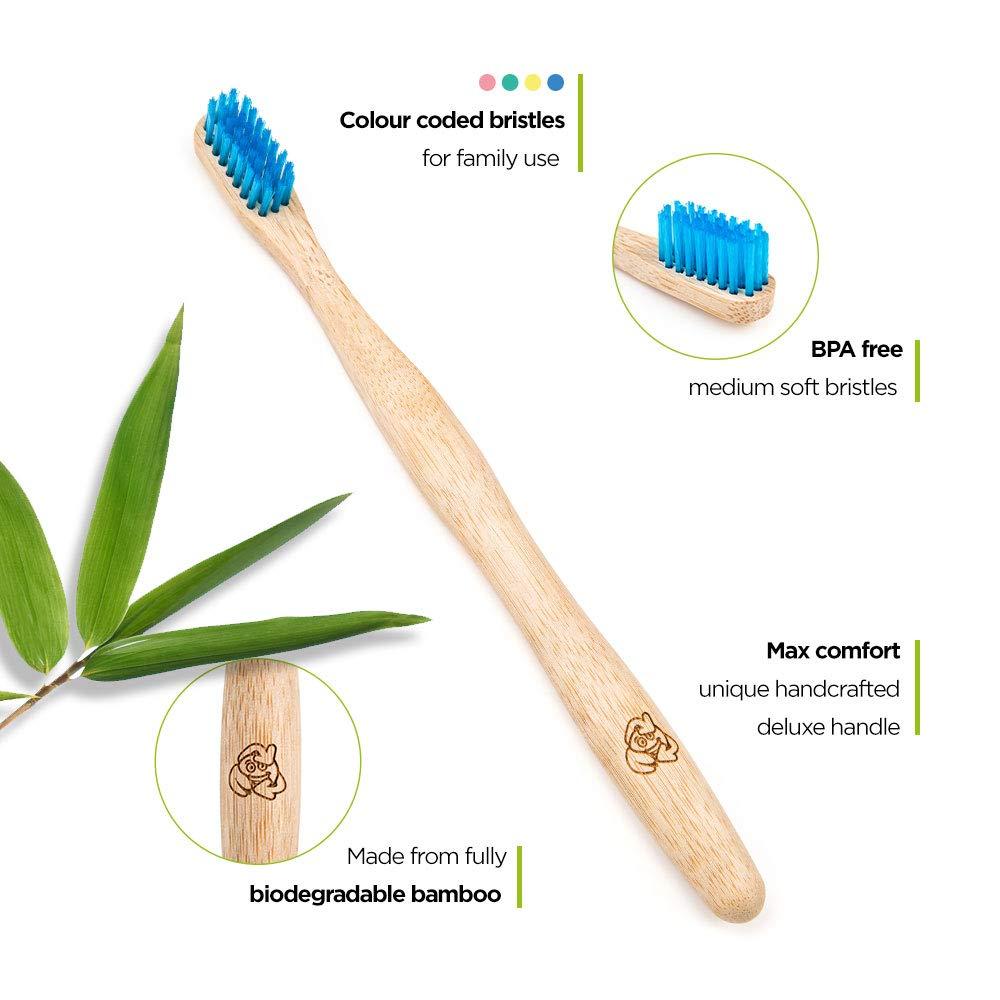 Beneficios Del Cepillo De Dientes Bambu Cepillos De Dientes Para Tu Higiene Dental