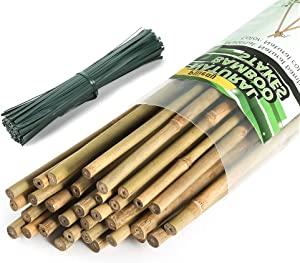Pllieay 64 Pieces Bamboo Stakes 6 Feet for Plant Stakes Supports with300 Pieces 15 cm Long Green Metallic Twist Ties