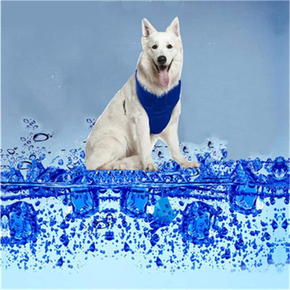 XDYFF Chaleco de refrigeración para Perro, Chaleco Refrescante ...
