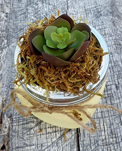 Yellow Mason Jar Artificial Succulent Planter, Decorative Succulent, Artificial Greenery - 16oz Jar