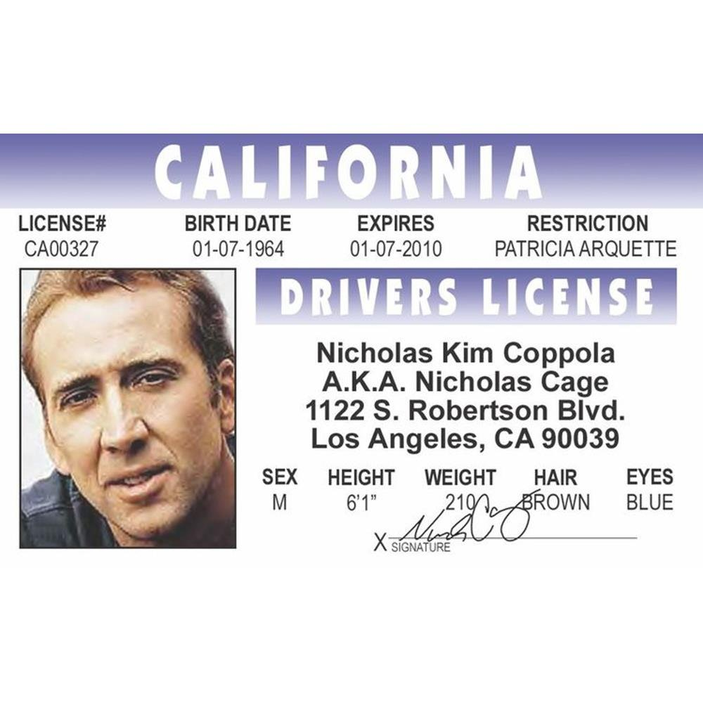 Cages Drivers License Signs 4 Fun Nncidm N