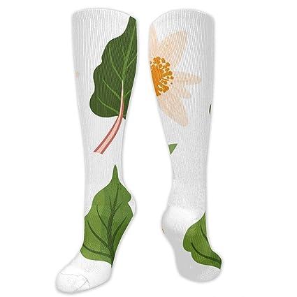 Amazon.com: RobotDayUpUP Medicinal Plants and Herbs Womens ...