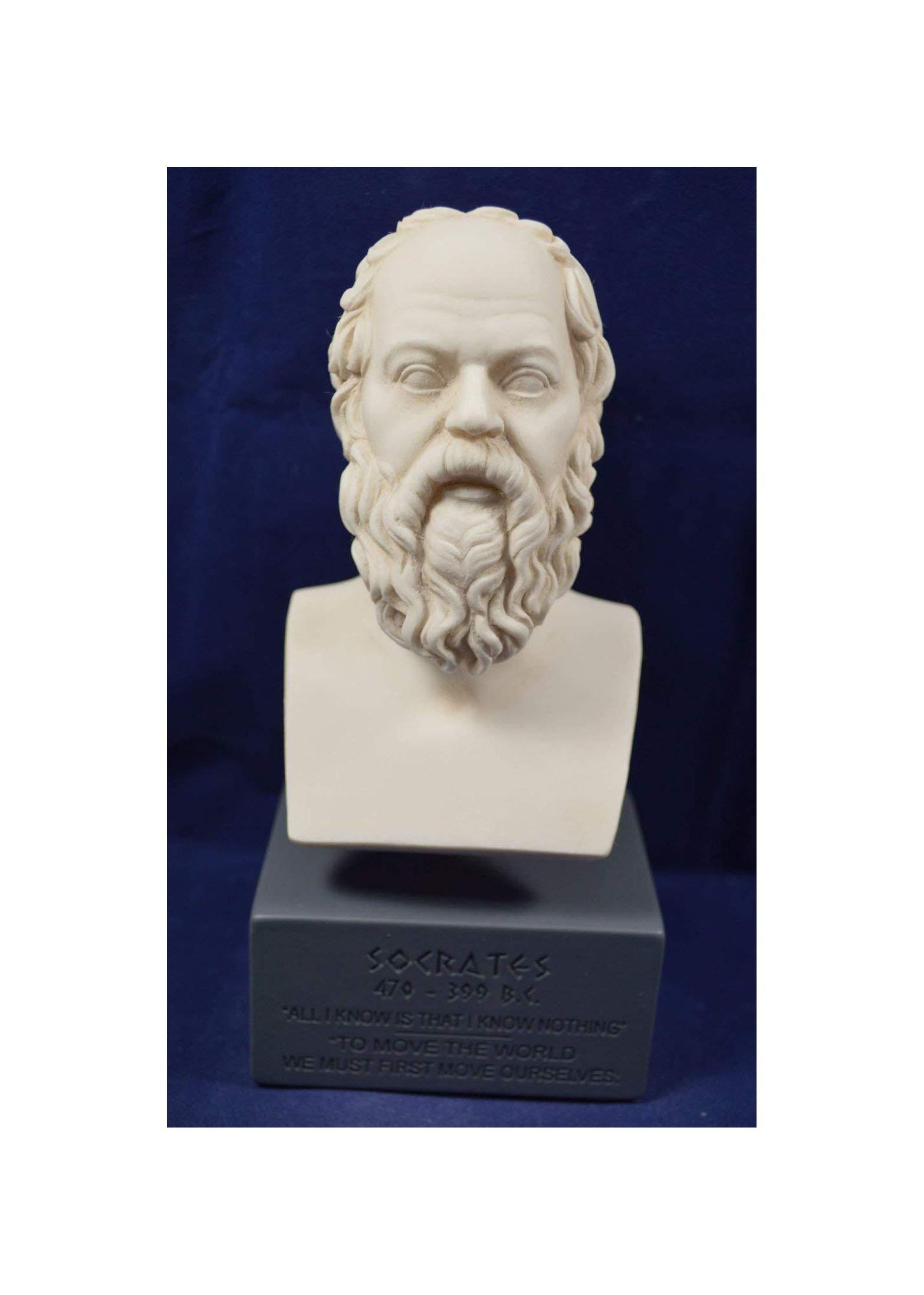 Estia Creations Socrates Sculpture Ancient Greek Philosopher Museum Reproduction Bust by Estia Creations