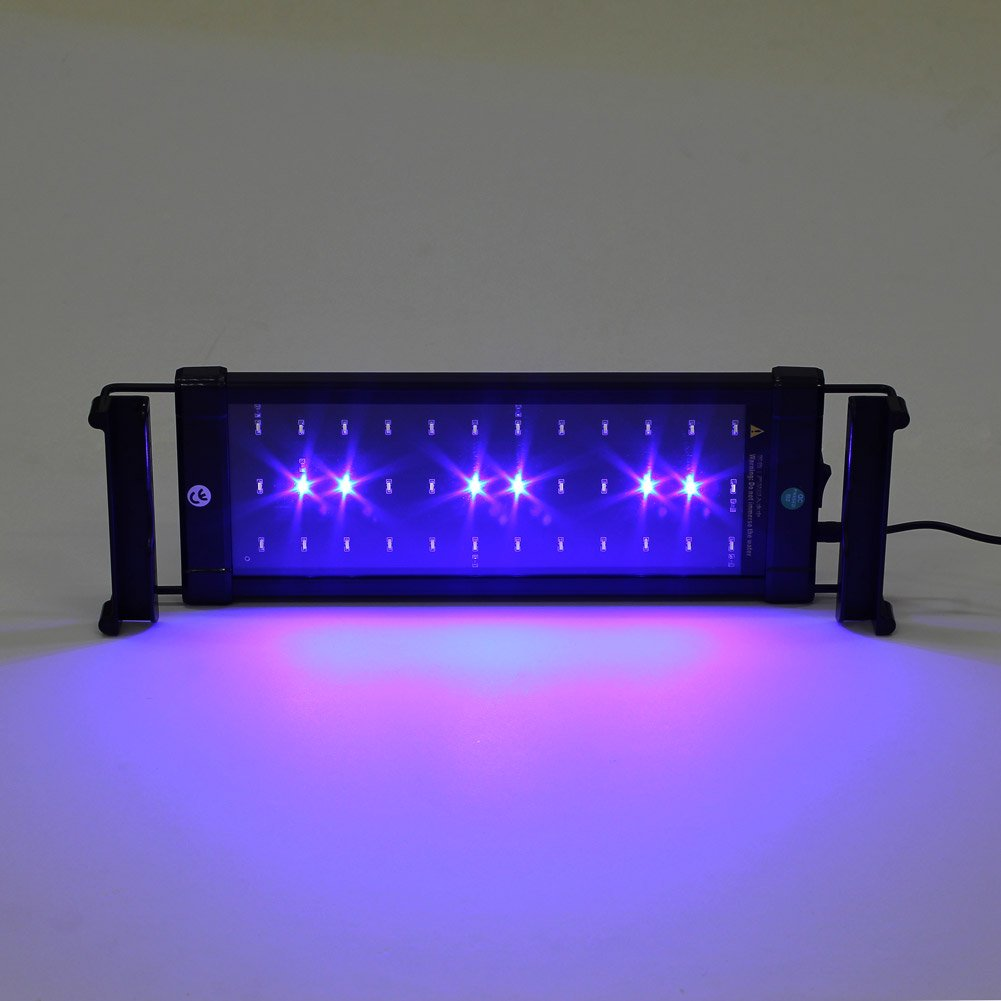 Lámpara acuario, luces para acuarios y estanques, 300 lúmens 30-50cm 36LED, Color de luz blanco y azul, con enchufe EU-Simbr: Amazon.es: Electrónica