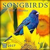 Songbirds of North America 2017 Wall Calendar
