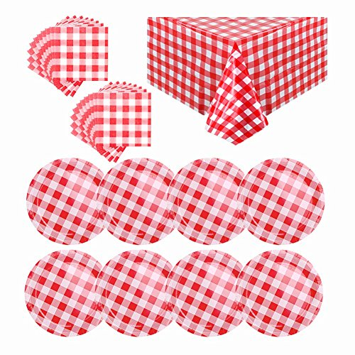 OurWarm Picnic Disposable Dinnerware Sets, Red and White Checkered Tablecloth, Plates and Napkins, Disposable Paper Dinnerware for Wedding Dinner