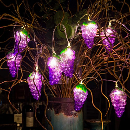 Kanodan Grape Led Battery String Lights Festival Decoration Halloween/Christmas/Thanksgiving/Theme Party/DIY Kid's Room Cute Design (Purple)