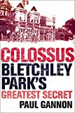 Front cover for the book Colossus: Bletchley Park's Greatest Secret by Paul Gannon