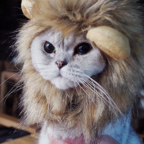 Bello Luna Lion Hair Headgear for Small Dog and Cats,Lion Mane Wig Puppy Cosplay Costume for Halloween Christmas Easter Festival Party -