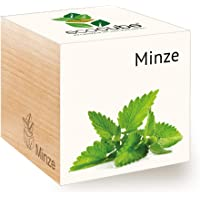 Feel Green Ecocube Minze, Nachhaltige Geschenkidee (100% Eco Friendly), Grow Your Own/Anzuchtset, Pflanzen Im Holzwürfel, Made in Austria