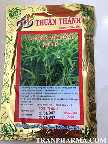 Hat giong rau muong (Morning glory, water spinach) High germination rate, & yield, pest - Hat Malabar