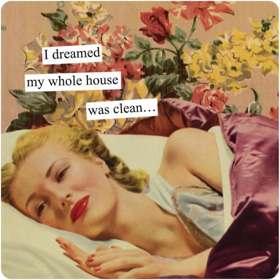 Anne Taintor Square Refrigerator Magnet - I Dreamed My Whole House Was Clean