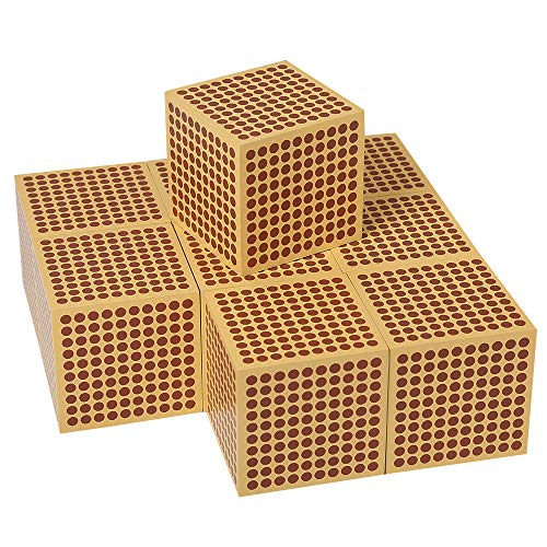 LEADER JOY Montessori Mathematics Materialc 9 Wooden Thousand Cubes ()