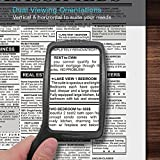 MagniPros Jumbo Size Magnifying Glass Wide