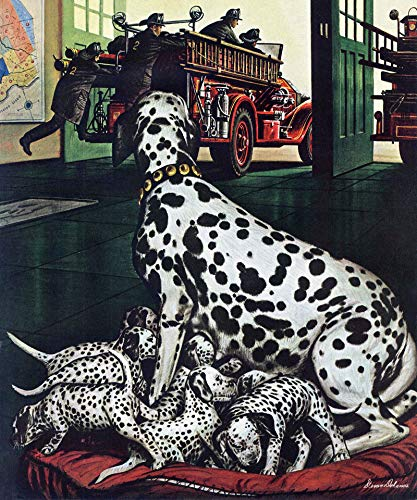 (Marmont Hill 29x24 Dalmatian and Pups by Stevan Dohanos Painting Print on Wrapped Canvas, 29