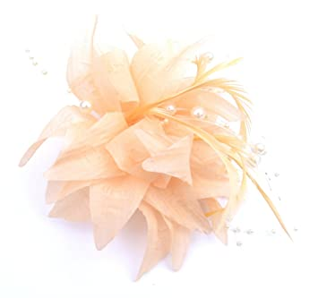 Tangerine Fascinators PALE PEACH PINK FASCINATOR CAN BE WORN BOTH IN THE  HAIR PINNED TO 6ed3deb63cc