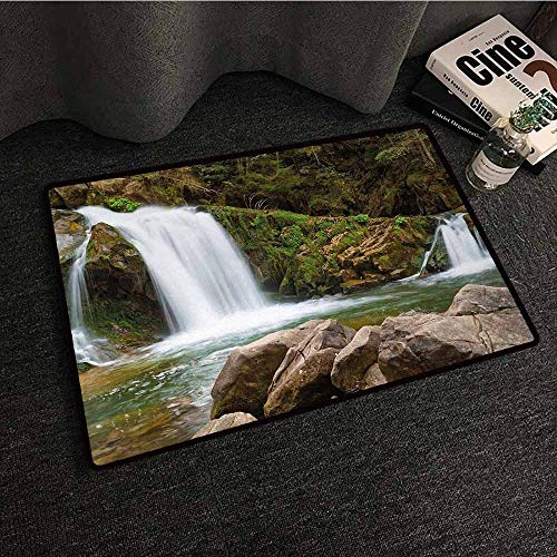 DuckBaby Entrance Door mat Waterfall Photo of Mother and Baby Waterfalls by The Mountain Side with Moss on Rocks All Season General W30 xL39