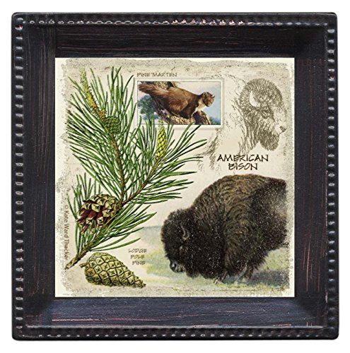 Thirstystone Ambiance Coaster Set, Erican Bison, Multicolored