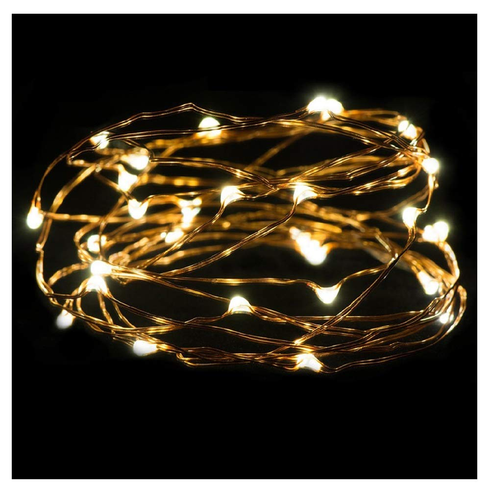 Connia 2M 20LED Button Cell Powered Silver Copper Wire Mini Fairy String Lights Home Decorate (Beige)