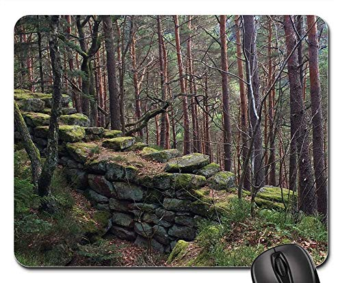 Mouse Pad - Wall Moss Forest Alsace Green Nature Plant Old