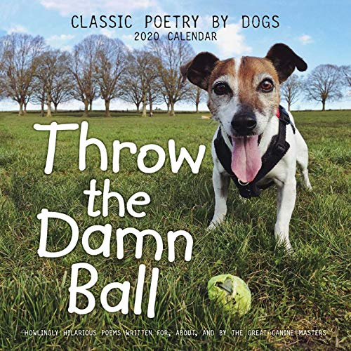Throw the Damn Ball 2020 Wall Calendar