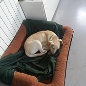 Leo4dog. Sofá alova. Cesta para chien. diferente tamaños, colores. Cama para perro. Cojín para perro. Perro cesta. (XL-120X90, Marrón oscuro)