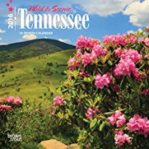 Tennessee, Wild & Scenic 2016 Mini 7x7 by Browntrout Publishers (2015-07-15)