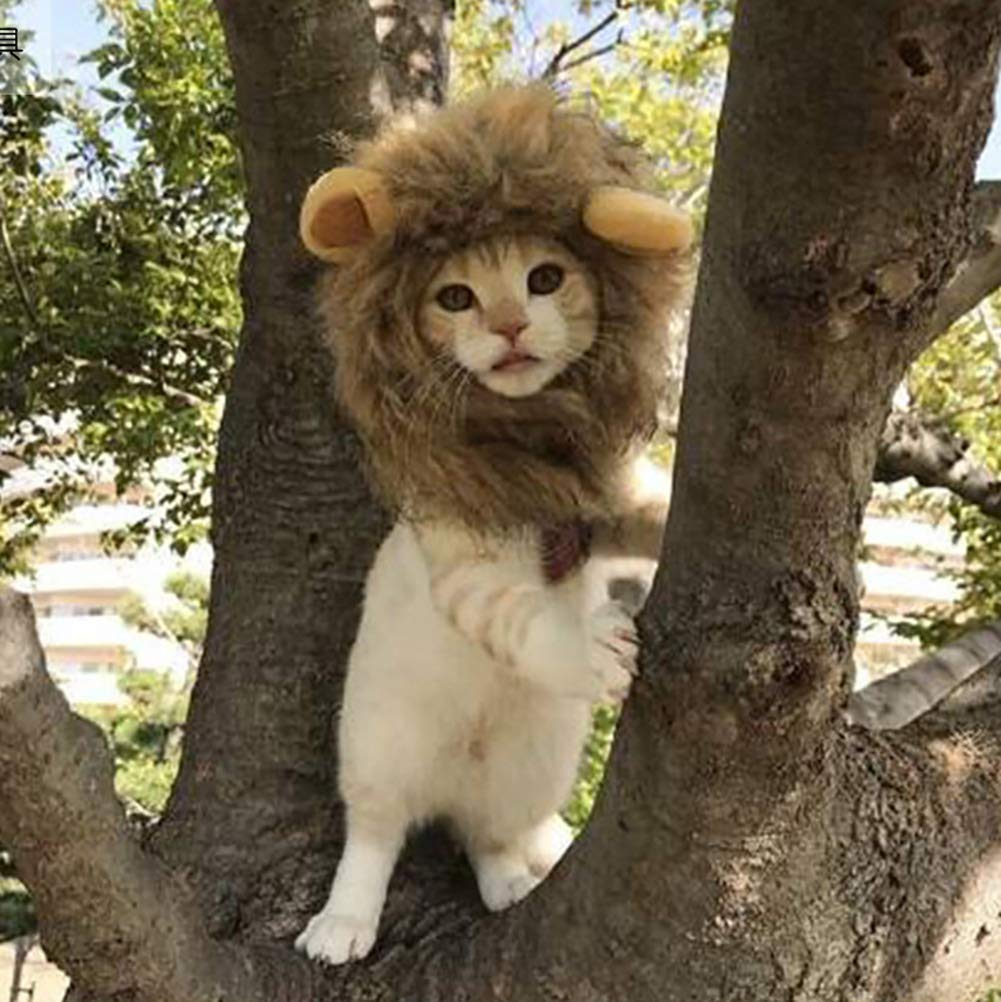 Adjustable Soft Furry Pet Wig cat Dress up,Washable Pet cat Lion Hair Clothing Accessories for Halloween Christmas Easter Festival Party Activity Glucktrade Pet Costume Lion Mane Wig for Cat Dog