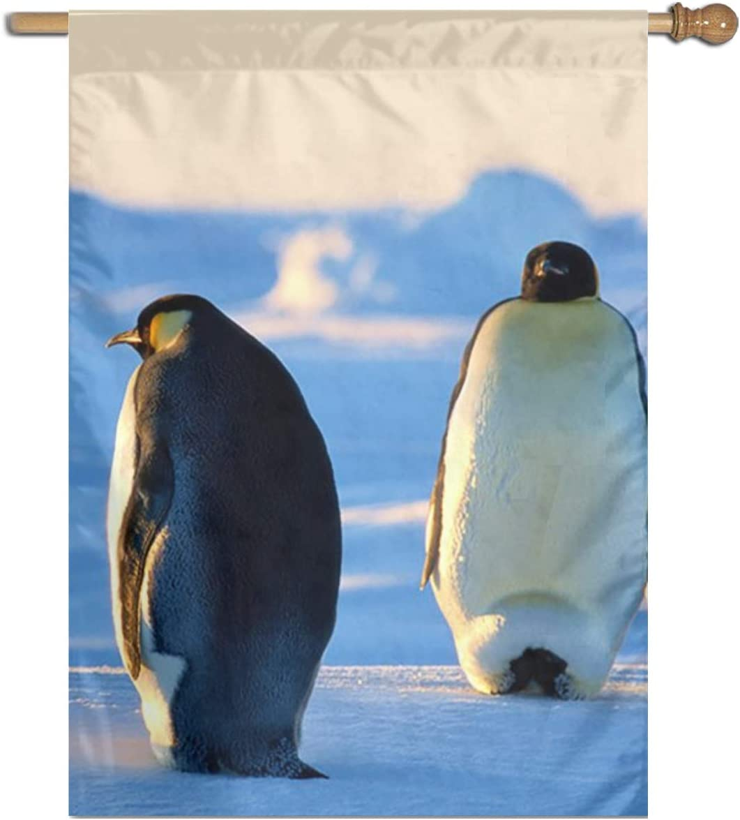 "Polyester Indoor/Outdoor Garden Flag, Ice Penguin Single Print Home Wall Banners Decorative Flag 27""x37"" 61YMt-wuduL"