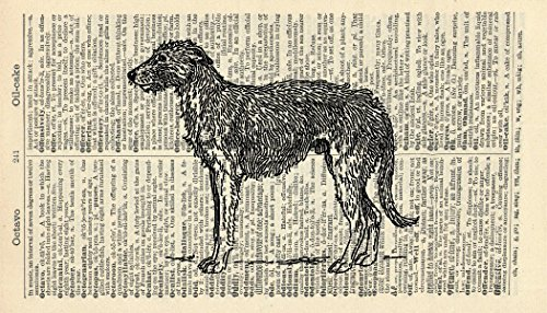 - Irish Wolfhound Art Print - Animal Art Print - Vintage Art Print - Vintage Dictionary Art Print - Wildlife Artwork - Gift - Dog Illustration - Book Print 684B