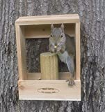 Deluxe Combination Squirrel Feeder