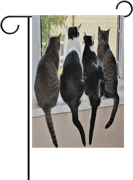 NOAON Bandera de jardín 12x18 Pulgadas Casa de Gatos Cuatro ...