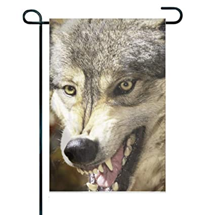 Amazon.com: haiqingcjhov Flag Garden Flag Wolf Snout Teeth ...
