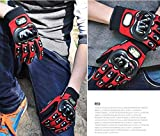 Motorcycle Accessories Sports Pro-Biker Motocross Racing Finger Protection Armor Red Gloves Size M For 1991 1992 1993 1994 1995 1996 1997 1998 1999 2000 2001 2002 2003 2004 2005 2006 2007 Honda CBR600 F2 F3 F4 F4i