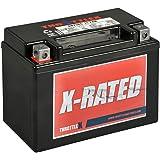 ThrottleX Batteries - ADZ14S- AGM Replacement Power Sport Battery