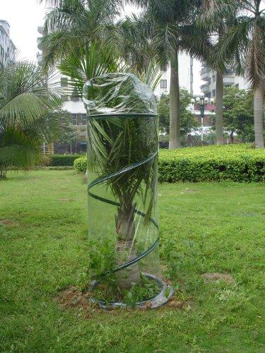 Zenport SH3240E Portable Pop-Up Greenhouse for Small Plants/Shrubs, 6-Feet High