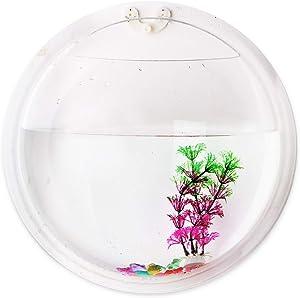 Wall Mounted Hanging Fish Tank Decor, driew Clear Acrylic Bubble Hanging Fish Tank Bowl Round Vase Flower Plant Pot Betta Aquarium