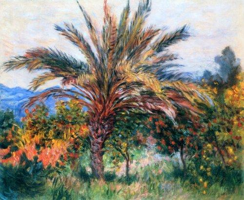 Artisoo Palm Tree At Bordighera–サイズ: 30x 25インチ–印象派油絵Reproduction–クロード・モネの商品画像