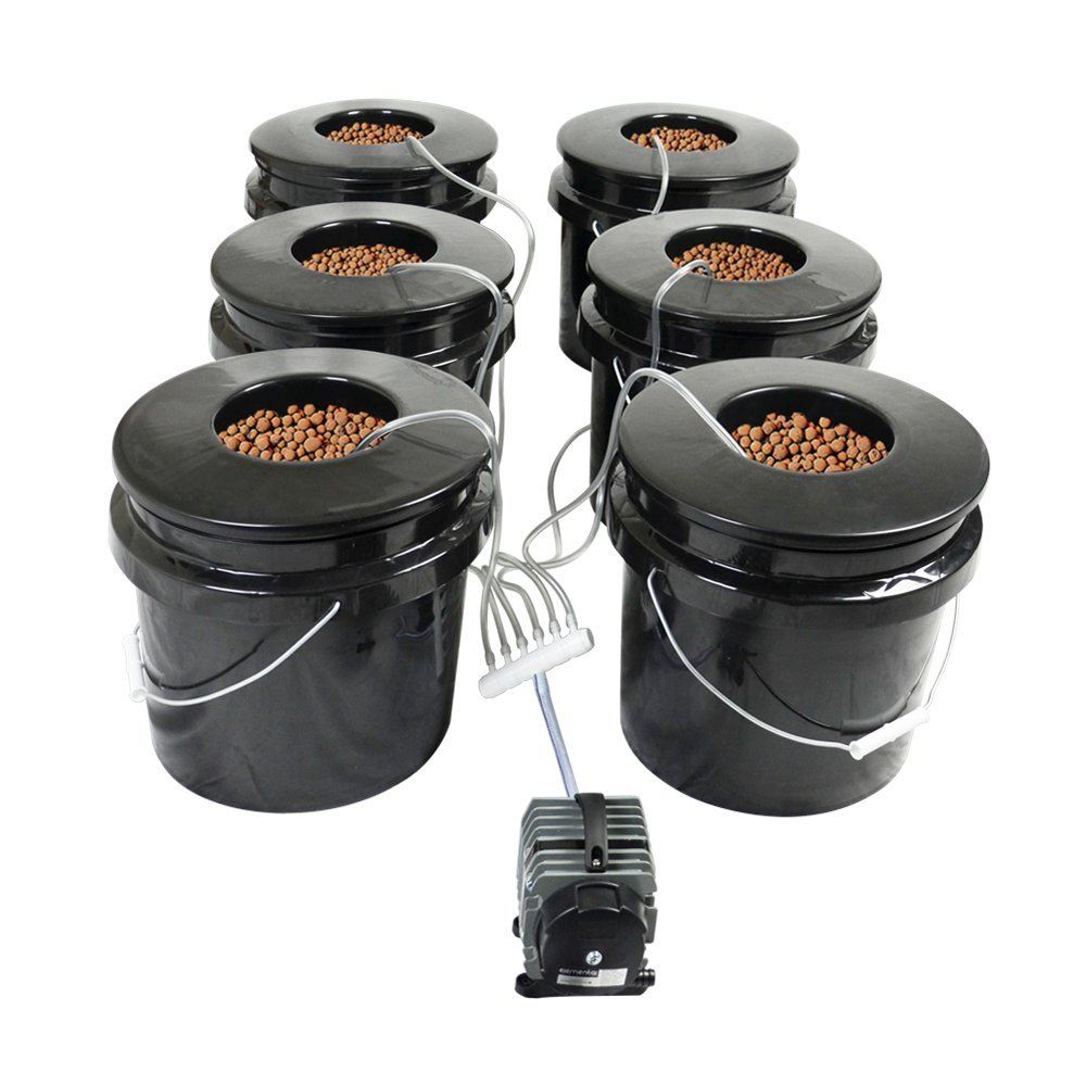 HTG Supply Bubble Brothers 6-Site DWC Hydroponic System by HTG Supply