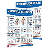 Dumbbell Workout Poster/Chart Set: Shoulder Training - Dumbbell Exercises Poster - Dumbbell Workout Chart - Dumbbell Workout Poster - Dumbbell Exercises ... Training - Fitness Wall Charts - Strength