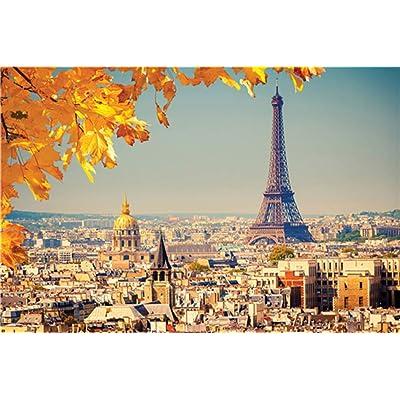 LB Paris Theme Eiffel Tower Puzzles 1000 Pieces Castle City Landscape Puzzles for Adults Brain Teasers Interesting Toys Game Patry Decorations: Toys & Games