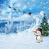 GladsBuy Lovely Snowman 10' x 10' Computer Printed Photography Backdrop Christmas Theme Background ST-145