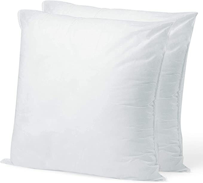 Pillow Insert 10 X 10 Polyester Filled Standard Cover 2 Pack Amazon Ca Home Kitchen