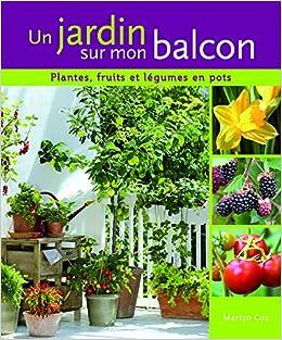 Amazon Fr Un Jardin Sur Mon Balcon Plantes Fruits Et Legumes En