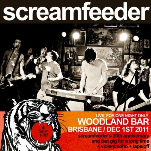 Hi Cs (Live At Woodland) - Hi Woodland