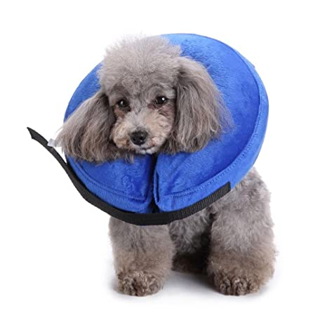 AOLVO - Collar Hinchable para Gatos y Perros, Color Azul: Amazon ...