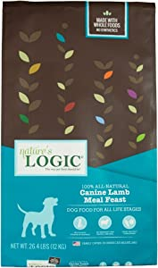 Nature'S Logic Dog Food Canine Meal Feast, Lamb