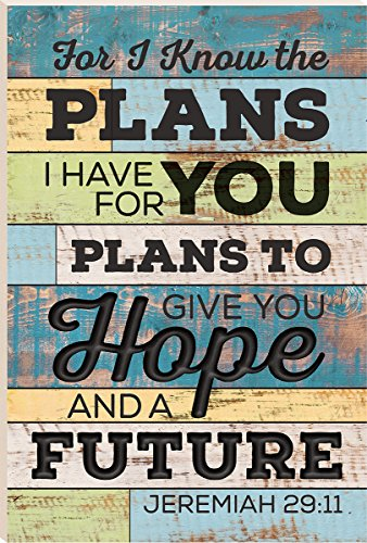 I Know the Plans I Have for You Multicolor 24 x 16 Wood Plank Design Wall Art Sign