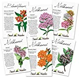 Milkweed Seed Packet Assortment (6 Individual Seed Packets) Non-GMO Seeds by Seed Needs